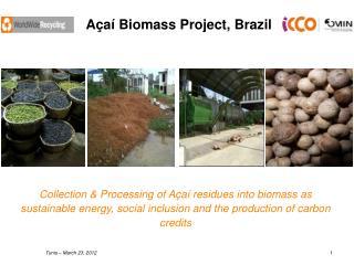 Açaí Biomass Project, Brazil