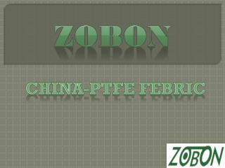 PTFE Fabric