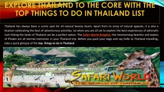 Explore Thailand to the Core with the Top Things to Do in Thailand List