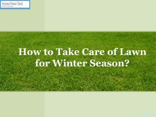 How To Take Care Of Lawn For Winter Season?