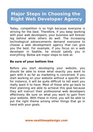 Major Steps in Choosing the Right Web Developer Agency