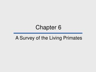 A Survey of the Living Primates