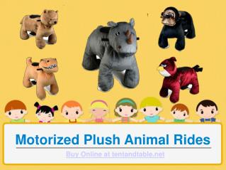 Motorized Plush Animal Rides - A Perfect for Kids Fun Activities!