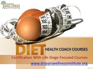 The training is based on the four pillars of health: Lifestyle
