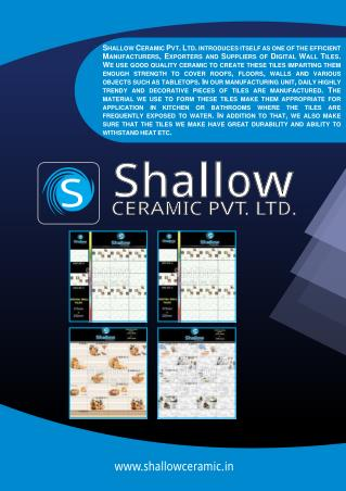 Shallow Ceramic Pvt. Ltd.Gujarat India