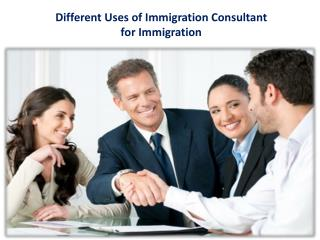 Different Uses of Immigration Consultant for Immigration