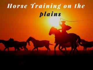 Horse training on the plains