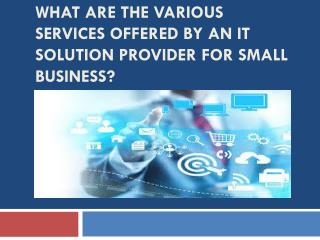 What are the various services offered by an IT solution provider for small business?