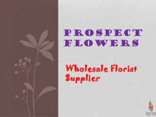 Buy Wholesale Wedding Flowers online