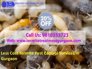 Less Price Termite Pest Control Services in Gurgaon Call 9810353723