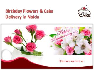 Birthday Flowers & Cake Delivery in Noida