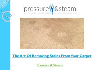 The Art Of Removing Stains From Your Carpet