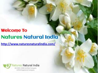 Buy Online Pure Floral Absolute Oil at Naturesnaturalindia.com