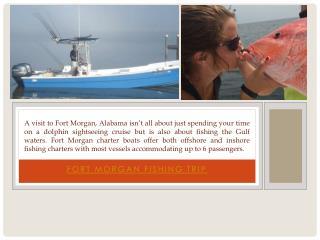 Fort Morgan Charter Fishing