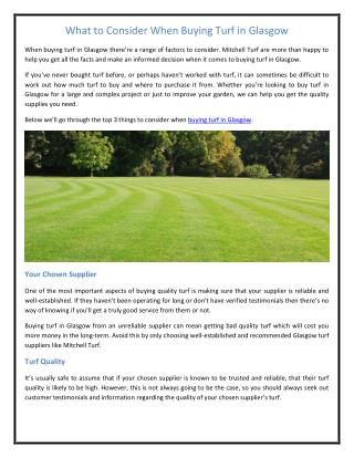 What to Consider When Buying Turf in Glasgow