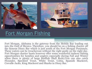 Fort Morgan Deep Sea Fishing