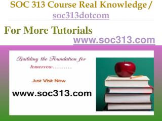 SOC 313 Course Real Tradition,Real Success / soc313dotcom