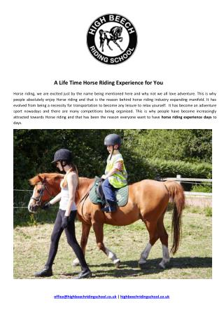 A Life Time Horse Riding Experience for You