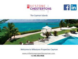 Best-In-Class Real Estate Companies in the Cayman Islands