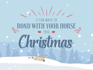 5 Fun Ways to Bond with Your Horse This Christmas