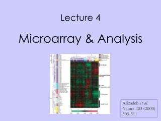 Lecture 4 Microarray & Analysis