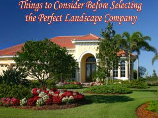 Points to remember while choosing perfect landscape company