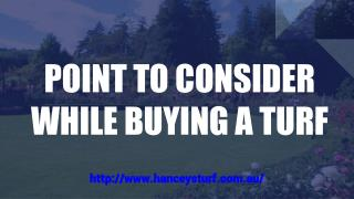 POINT TO CONSIDER WHILE BUYING A TURF!!