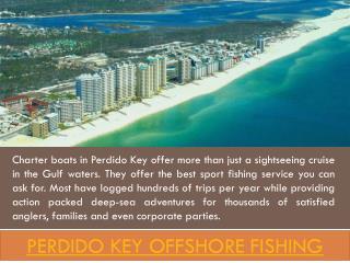 Perdido Key Fishing
