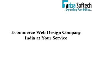 Ecommerce Web Design Company India