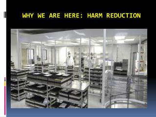 Why We Are Here: Harm Reduction