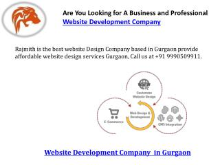 Are you looking for a business and professional website development company
