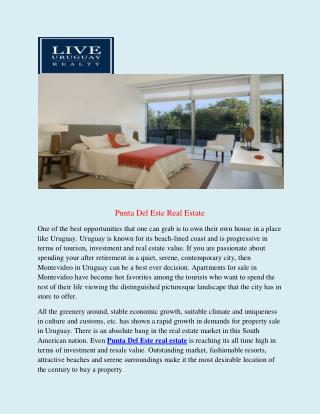 Punta del este real estate | Real Estate Punta Del Este