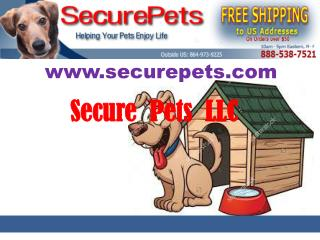 Buy the perfect dog house air conditioner for your pet at Securepets.com