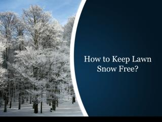 How to Keep Lawn Snow Free?