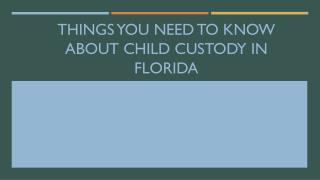 Things You Need to Know About Child Custody in Florida