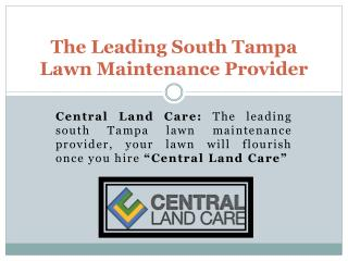 South Tampa Lawn Care-Maintenance| Lawn service Tampa