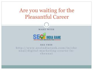 Are you waiting for the Pleasantful Career