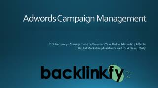 Adwords PPC Advertising & Campaign Management