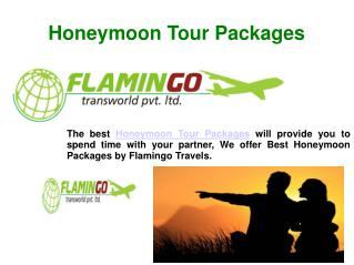 One of the most preferred Honeymoon Tour Packages
