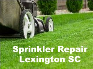 Low Cost Sprinkler Repair Lexington SC