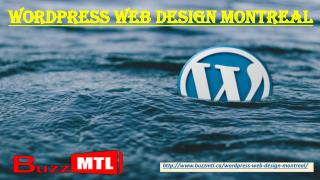 Wordpress Web Design Montreal