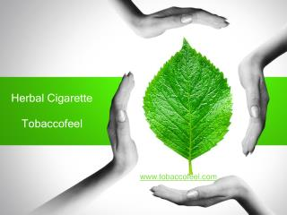 Buy herbal cigarettes brands in India