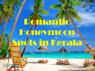 Check Out The Amazing Honeymoon Spots in Kerala