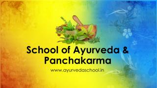 Best Ayurveda Schools in Kerala | School of Ayurveda and Panchakarma
