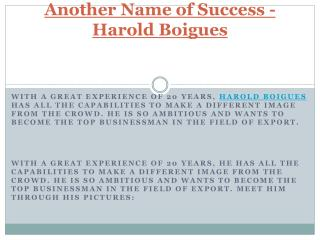 Another Name of Success - Harold Boigues
