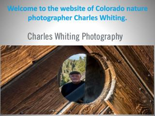 Welcome to the website of Colorado nature photographer Charles Whiting.