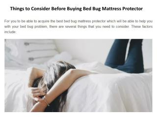 Things to Consider Before Buying Bed Bug Mattress Protector