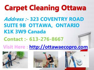 Eco-Pro - Carpet Cleaning Ottawa