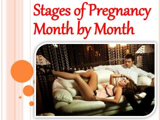 Stages of Pregnancy Month by Month