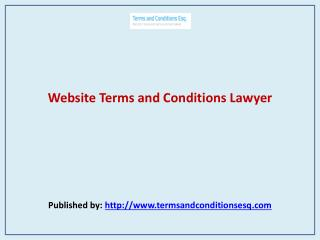 Website Terms and Conditions Lawyer